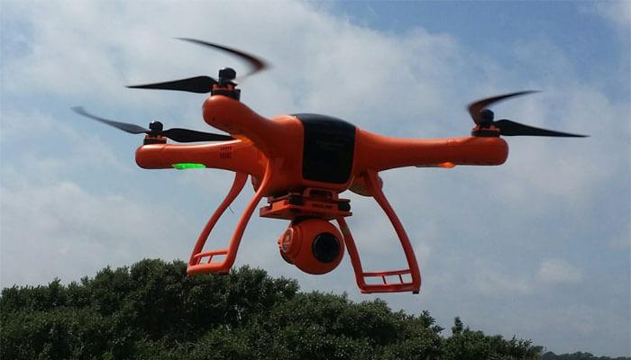 dron wingsland scarlet minivet