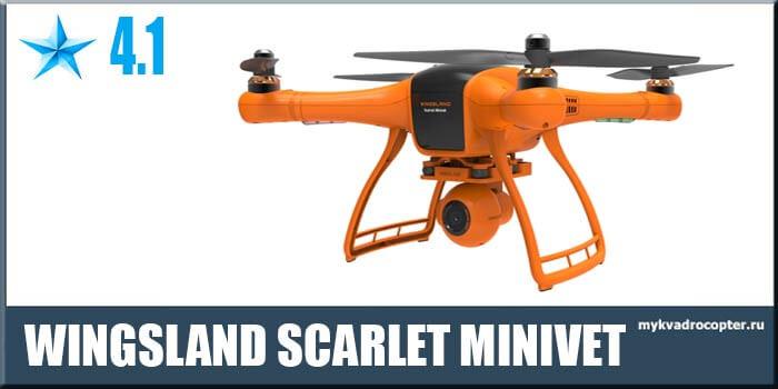 Wingsland Scarlet Minivet интересный и яркий.