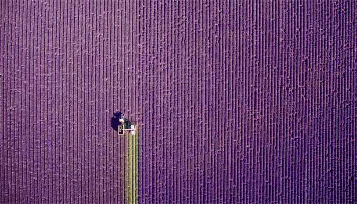 pervoe mesto konkurs fotografij - Работы победителей на четвёртом международном конкурсе дрон-фотографий.