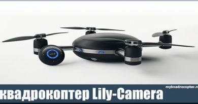 Lily Camera